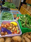 more Food Pantry produce