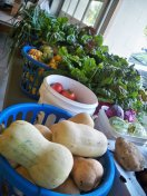 locally grown Food Pantry Produce